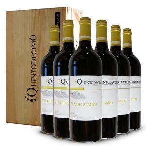 Falanghina Via del Campo Irpinia DOC 2019 6 bottiglie in Cassa Legno Originale – Quintodecimo