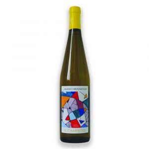 Pinot Nero vinificato bianco frizzante Il Campetto Provincia di Pavia IGT – Alessio Brandolini