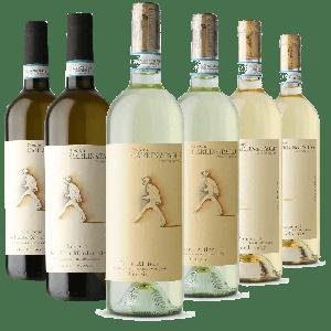 Degustazione 6 bt Bianchi Piemonte - Carlin de Paolo