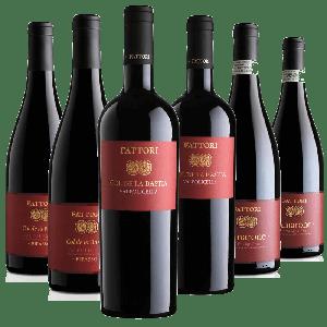 Degustazione 6 bt Rossi Valpolicella - Fattori